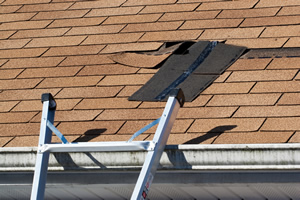 Roof repair by Absolute Building Solutions